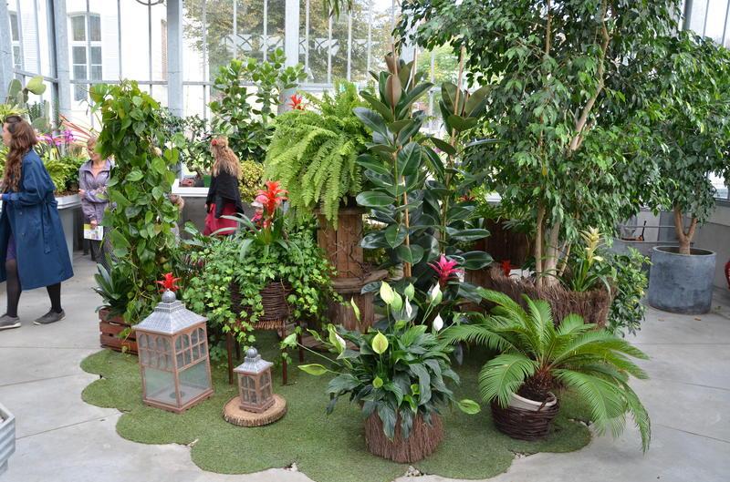 Vide jardin et f te des plantes amiens 80000 01 mai 2020 - Jardin des plantes angers horaires ...