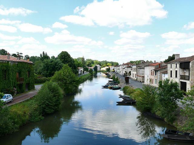 Vue de la rivière à Coulon